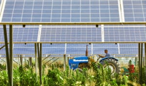 Solar utilization on farmland